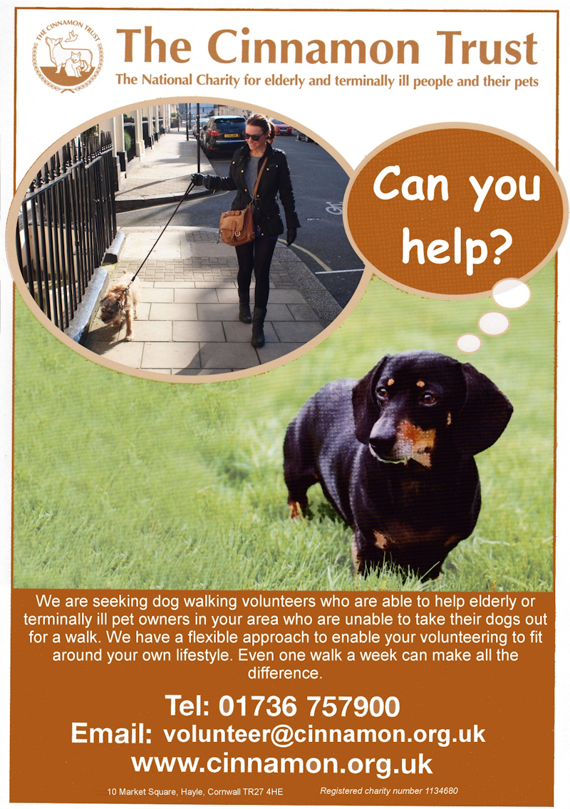 Cinnamon Trust Can You Help Poster